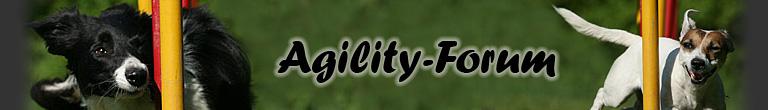 Banner_Agility-Forum.jpg